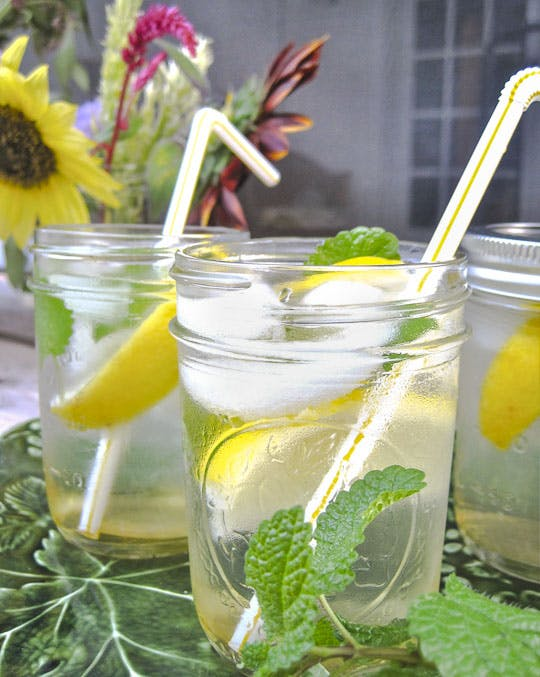 image of a lemon water drink with mint in a mason jar