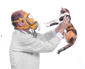 image of man waring dust mask holding a cat in the air to illustrate pet contaminents
